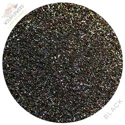Wildflowers Black Holo Micro Glitter Pot #12025